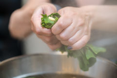 Woman puts vegetables into the pot. Conception of healthy food p Stock Photos