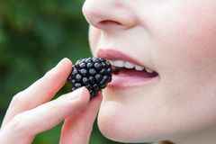 Woman putting blackberry into mouth Royalty Free Stock Photo