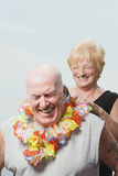 Woman putting a flower garland on husband Royalty Free Stock Image