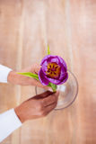 Woman putting a flower in a vase Stock Photography