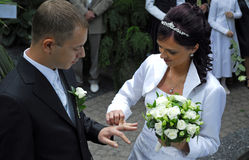 Woman putting ring on groom Stock Photography