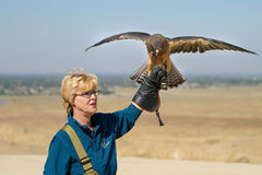 Woman putting on a show with her hawk Stock Photo