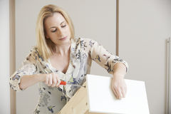 Woman Putting Together Self Assembly Furniture Stock Photo