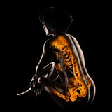 Woman radiography scan. On black Stock Images