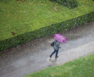 Woman in the rain. Heavy rain pouring from the sky Royalty Free Stock Photography