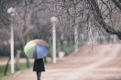 Woman in the rain at the park. With a colorful umbrella Royalty Free Stock Photo