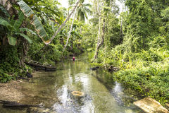 Woman in rainforest creek, West Papua Stock Photos