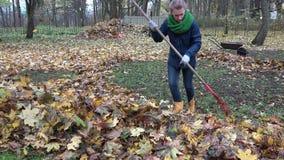 Woman rake autumnal leaves with big red rake in backyard. 4K stock footage