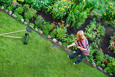 Woman rake in flower garden Stock Image