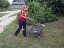 Woman rake hay 2 Royalty Free Stock Images