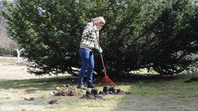 Woman rake leaves stock video