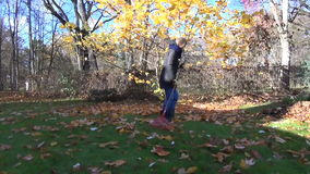 Woman rake leaves tree. Young women raking with a big rake bright autumn tulip-tree leaves in mother garden stock video footage