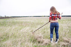 Woman rake lightly dry grass from behind Stock Image