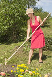 Woman raking the garden Royalty Free Stock Image