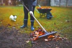 Woman raking leaves at autumn Stock Photography