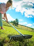 Woman raking leaves. Using rake. Person taking care of garden house yard grass. Agricultural, gardening equipment concept royalty free stock image