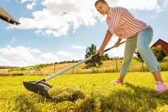 Woman raking leaves. Using rake. Person taking care of garden house yard grass. Agricultural, gardening equipment concept stock photo