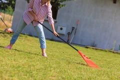 Woman raking leaves. Using rake. Person taking care of garden house yard grass. Agricultural, gardening equipment concept royalty free stock photography