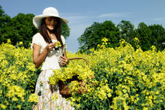 Woman in the rape field Royalty Free Stock Photography