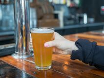 Woman reaching for pint glass of IPA in a bar in a brewery. Woman reaching for full pint glass of IPA in a bar in a brewery royalty free stock image