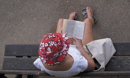 Woman reading on bench. Aerial view of woman in colorful sunhat reading book on bench outdoors royalty free stock images