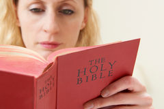 Woman Reading Bible. Close Up Of Woman Reading Bible Royalty Free Stock Photography
