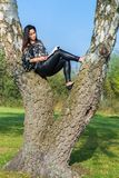 Woman reading book in birch tree stock images