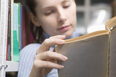 Woman Reading Book In Library Royalty Free Stock Images