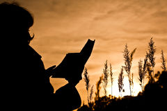 Woman reading a book on nature Stock Photography