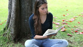 Woman reading a book next to a tree Stock Images