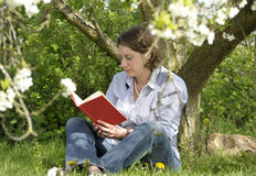 Woman reading a book under a tree Royalty Free Stock Image