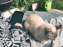 Woman reading ebook with domestic cat lying on legs, outdoors, toned, close up body parts.  Royalty Free Stock Photography