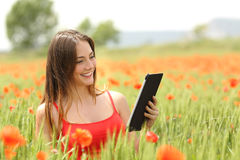Woman reading ebook in a red field Royalty Free Stock Photography