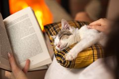 Woman reading by the fire and comforting her rescue kitten Stock Photos
