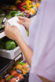 Woman reading her shopping list Stock Photography