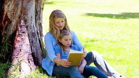 Woman reading a novel with her daughter. In a park stock footage