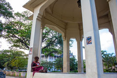 Woman reading at a park Stock Image