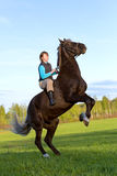 Woman on rearing horse Stock Images