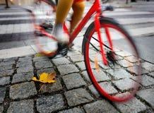 Woman on red bikein autumn Stock Photo