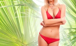 Woman in red bikini over palm trees background Stock Photos