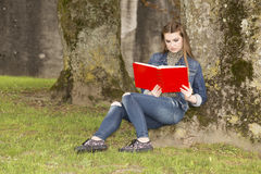 Woman with red book 3 Royalty Free Stock Image