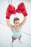 Woman with red boxing gloves arms up Royalty Free Stock Photos