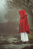 Woman with red cape in a misty landscape Royalty Free Stock Photography