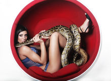 Woman in red chair holdung python Stock Photography