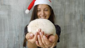 Woman in red christmas cap holds white rat. Beautiful young woman in red Christmas cap holding white rat in arms and show it to camera stock video