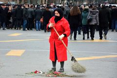 Woman in red coat sweeping up red carnations Stock Image