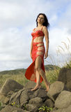 Woman in a red dress Stock Photo