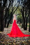 Woman in red dress in fall fairy tale forest. Autumn royalty free stock images