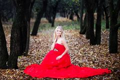 Woman in red dress in fall fairy tale forest. Autumn stock photo