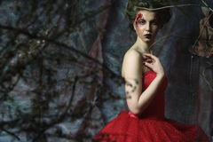 Woman in red dress. Fantastic Hairstyle and make up. Royalty Free Stock Photography